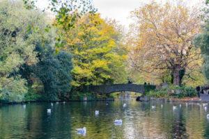 St. Stephen's Green parken i dublin